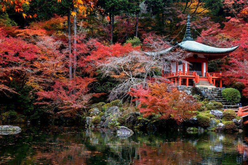 Herbst im japanischen Garten stockfotos