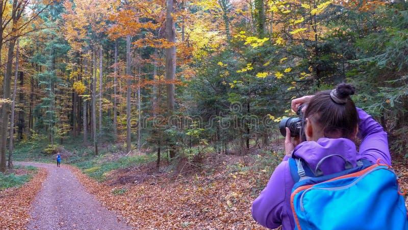 Herbst im Mädchen des Wald A fotografiert einen schönen Wald lizenzfreie stockfotos