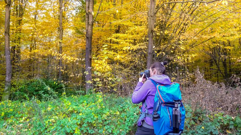 Herbst im Mädchen des Wald A fotografiert einen schönen Wald stockbild