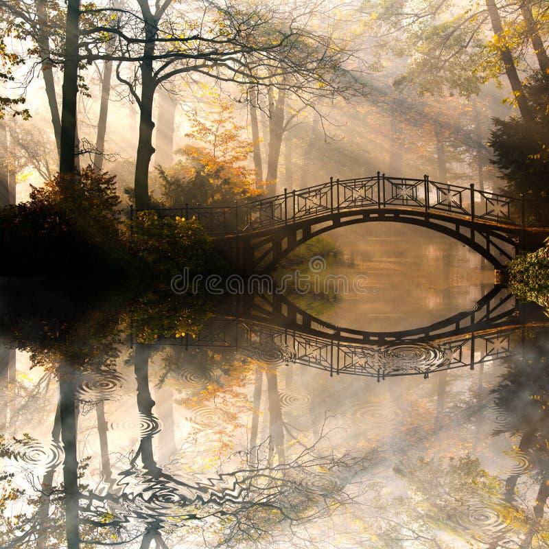 Herbst im nebelhaften Park stockfotos