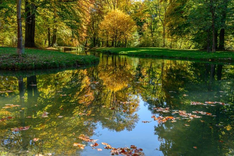 Herbst im Park in Munchen stockfotos