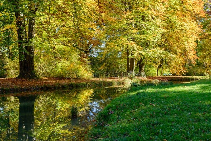 Herbst im Park in Munchen lizenzfreies stockfoto