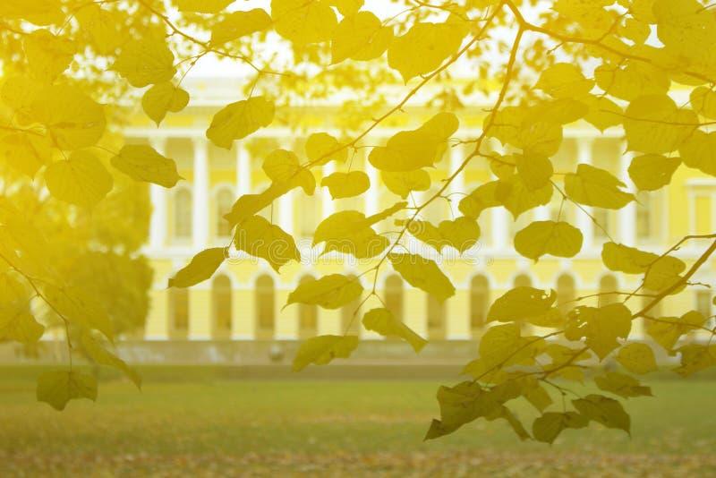 Herbst im Park und auf den Straßen stockfoto