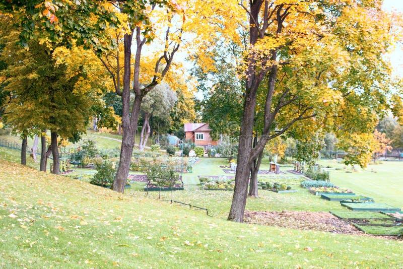 Herbst im Park und auf den Straßen lizenzfreie stockfotografie