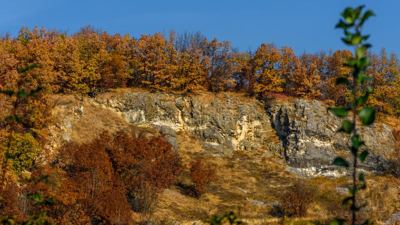 Herbst ist angekommen stockfoto