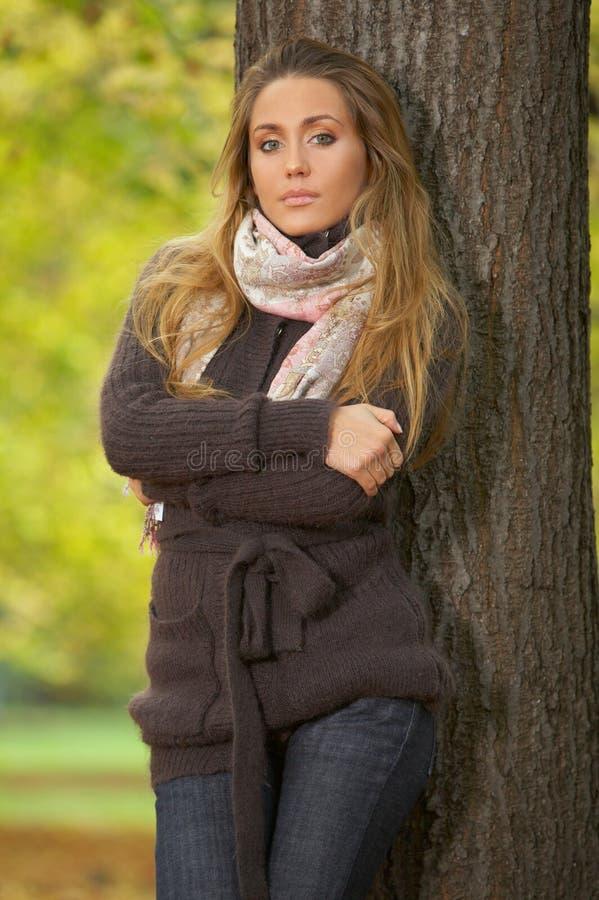 Herbst-Küken lizenzfreies stockfoto