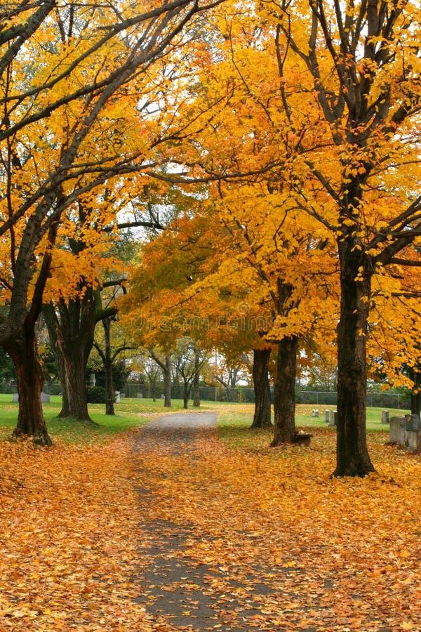 Herbst-Kirchhof stockbilder