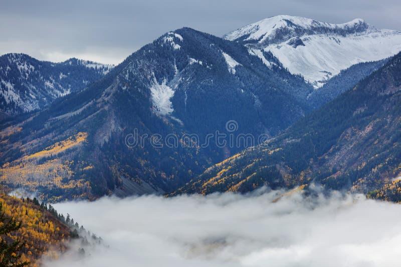 Herbst in Kolorado stockbild
