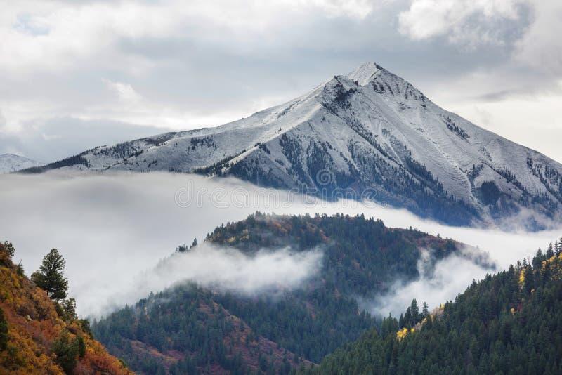 Herbst in Kolorado stockbilder