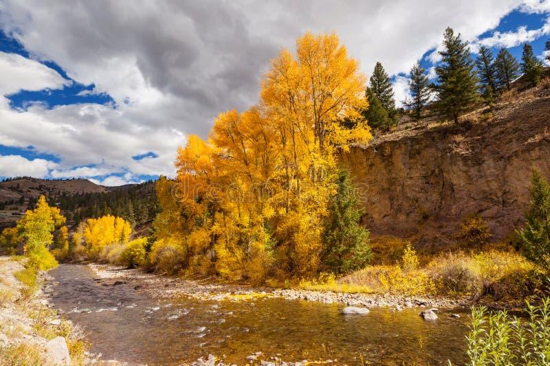 Herbst in Kolorado lizenzfreie stockbilder