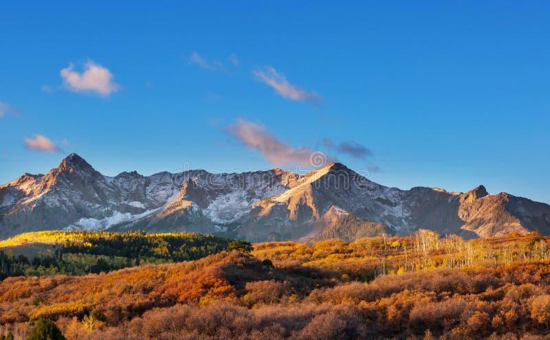 Herbst in Kolorado lizenzfreie stockfotos