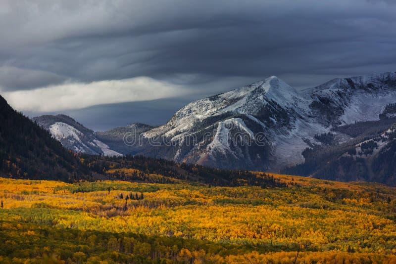 Herbst in Kolorado lizenzfreie stockfotografie