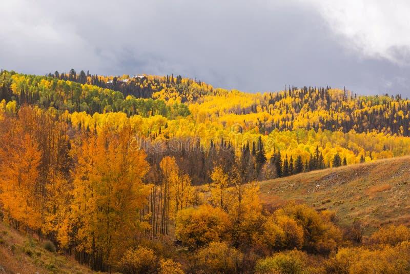 Herbst in Kolorado stockfotos