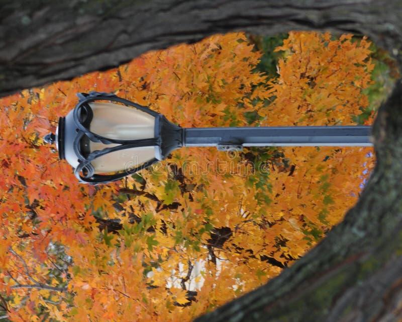 Herbst-Lampen-Pfosten lizenzfreies stockfoto