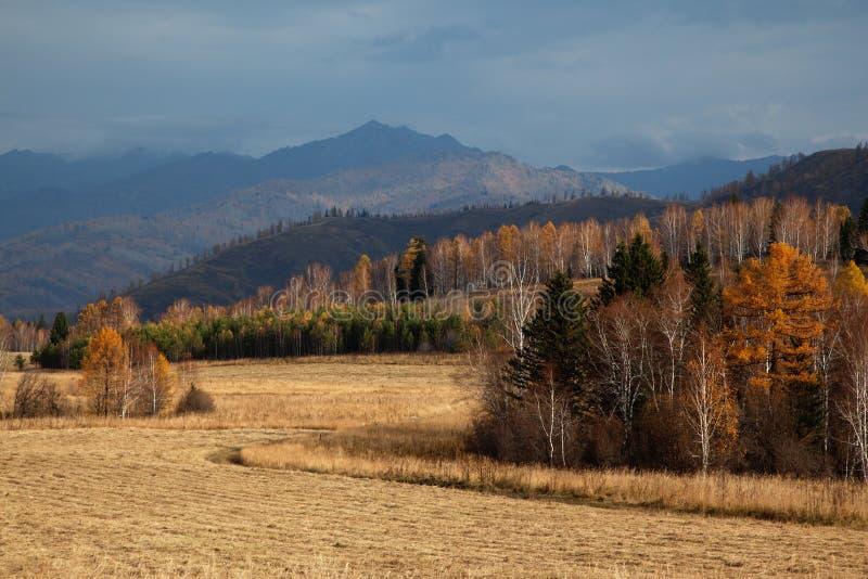 Herbst-Landschaft lizenzfreie stockfotografie