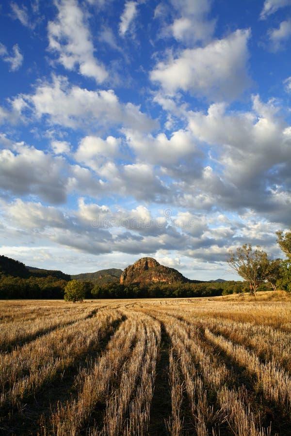 Herbst-Landschaft lizenzfreies stockfoto