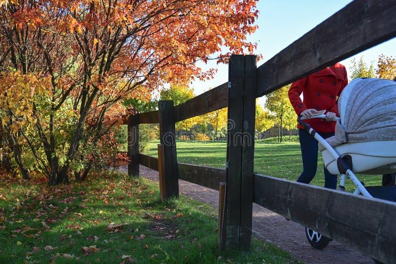 Herbst Leuteweg im Herbstpark stockfotos