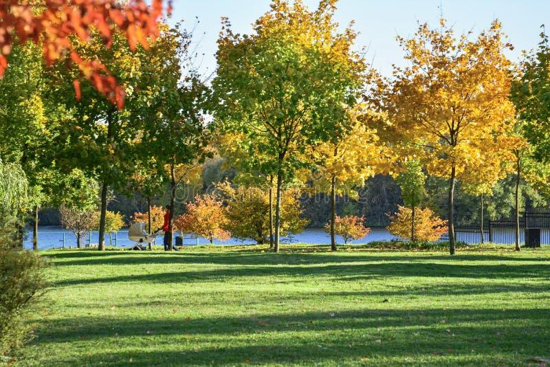 Herbst Leuteweg im Herbstpark stockbilder