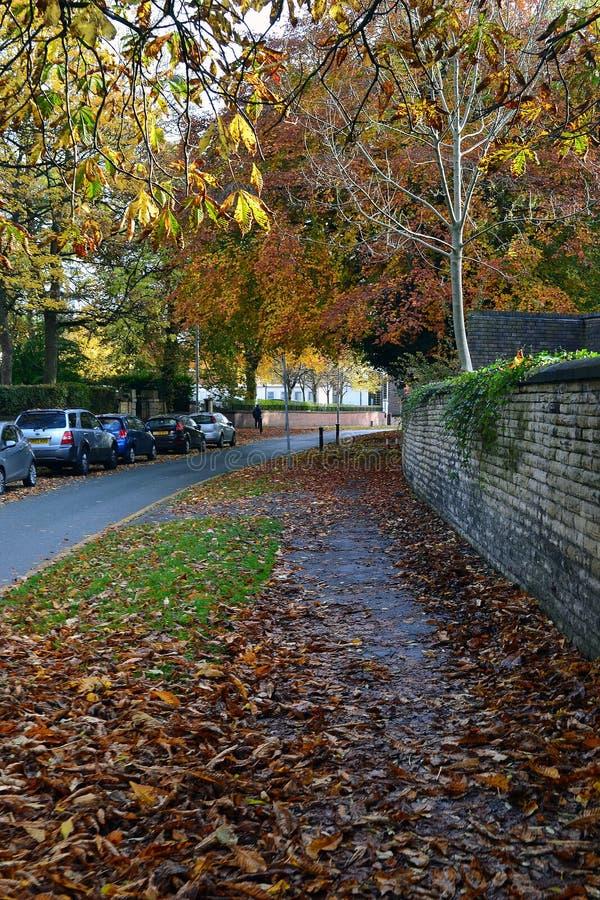 Herbst in Manchester lizenzfreie stockbilder