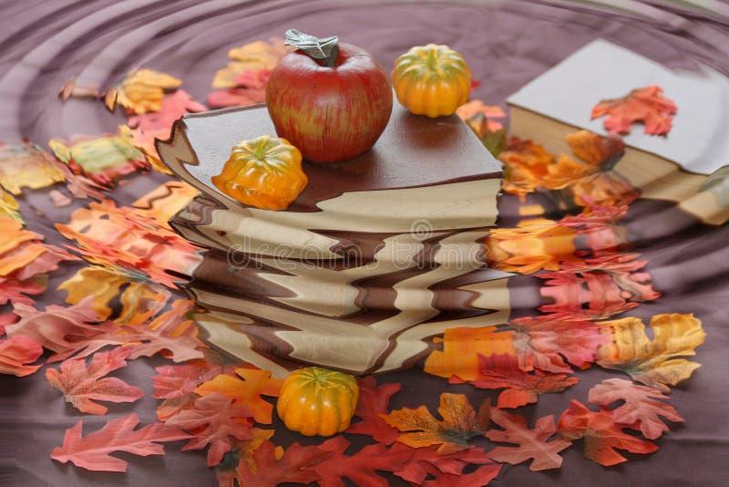 Herbst mit Regen. lizenzfreie stockbilder