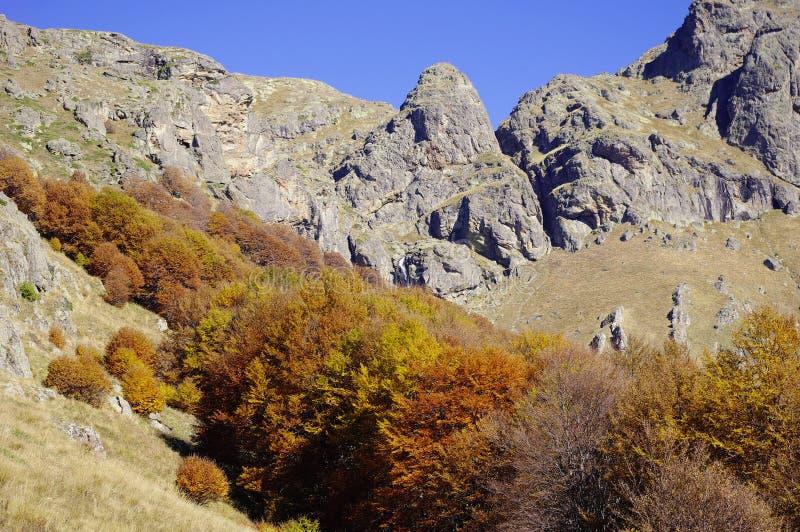 Herbst in Mittelbalkan, Bulgarien lizenzfreies stockbild
