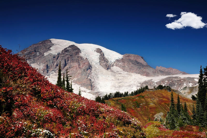 Herbst in Mt. regnerischer lizenzfreies stockbild