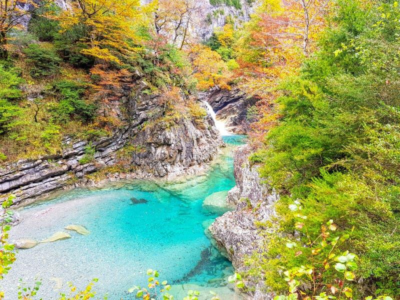 Herbst in Nationalpark Ordesa, Pyren?en, Huesca, Aragonien, Spanien Wenn der ausgezeichnete Farbton durch die Blätter gebildet is lizenzfreie stockfotos