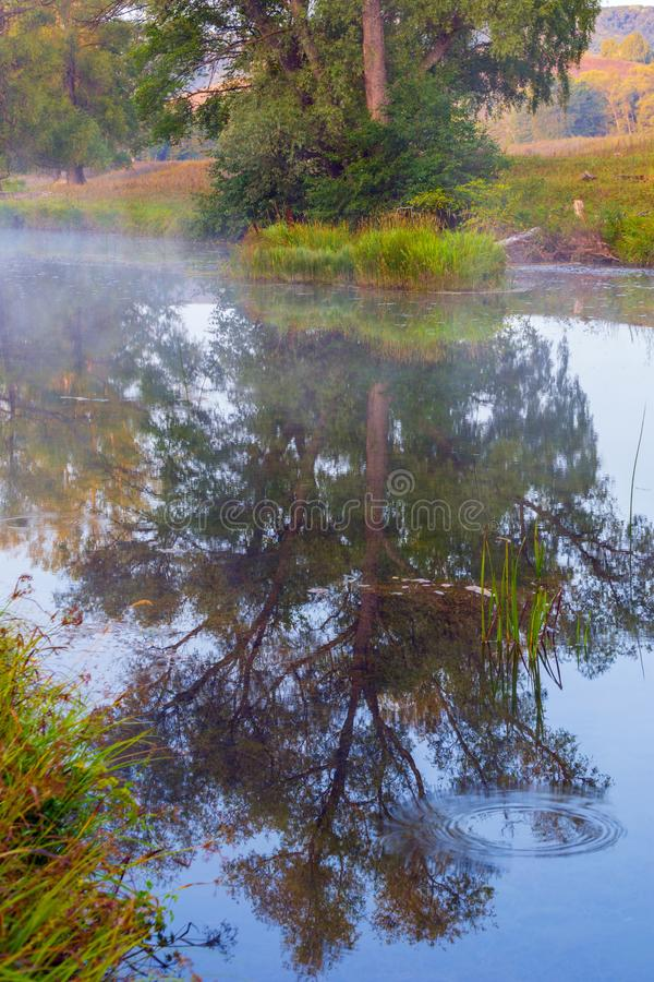 Herbst Nebeliger Morgen lizenzfreie stockfotografie