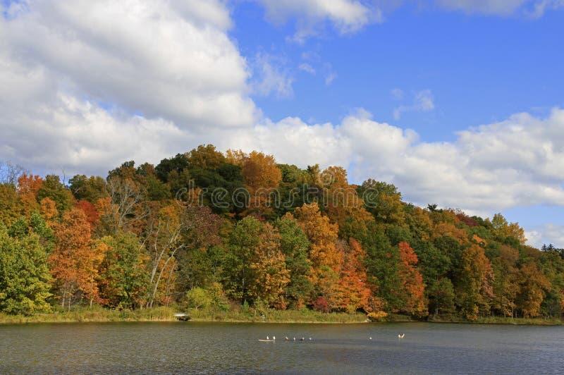 Herbst in New York lizenzfreie stockbilder