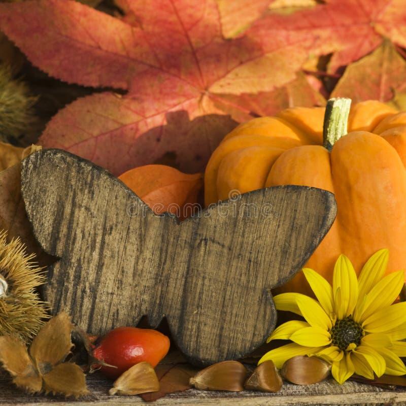 Herbst noch L ife stockfotos