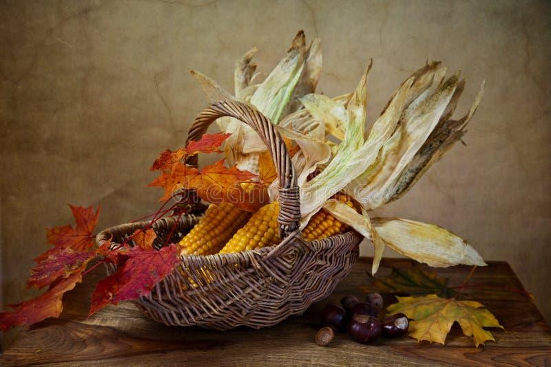 Herbst-noch Leben lizenzfreies stockbild