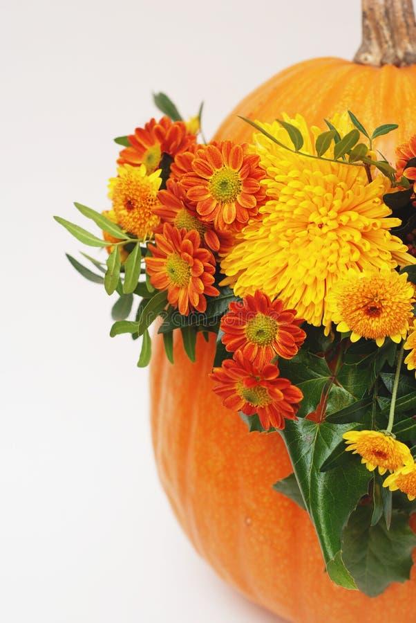 Herbst- oder Danksagungsblumengesteck im Kürbis auf einem weißen Hintergrund Vertikales Bild mit Kopienraum stockbild