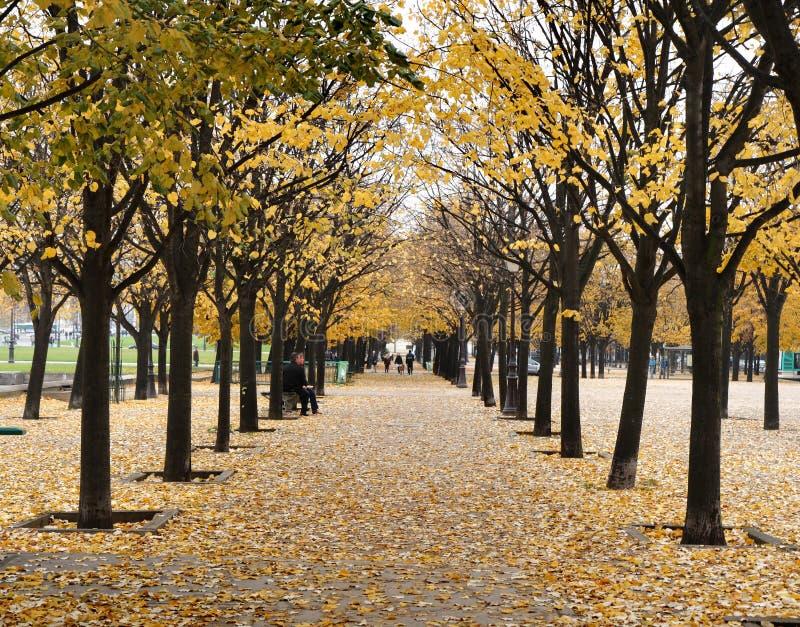 Herbst in Paris stockfotografie