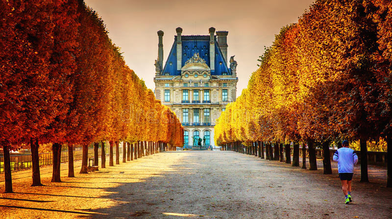 Herbst in Paris stockbilder