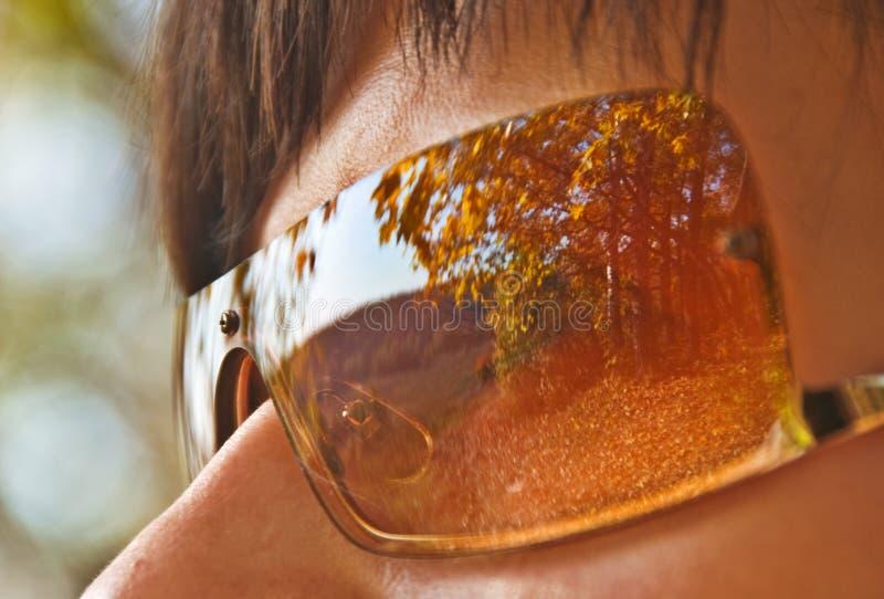 Herbst-Park-Reflexion in den Sonnenbrillen stockfotografie