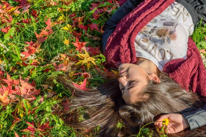 Herbst portait, reizendes Mädchen lizenzfreie stockbilder