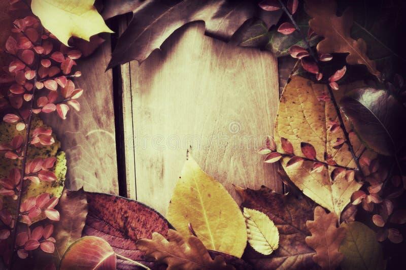 Herbst-Rand lizenzfreies stockbild