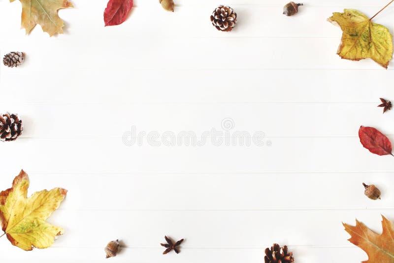 Herbst redete Zusammensetzung an Kreative Fallvorkehrung getroffen vom bunten Ahorn, von den Eichenblättern, von den Kiefernkegel lizenzfreie stockbilder