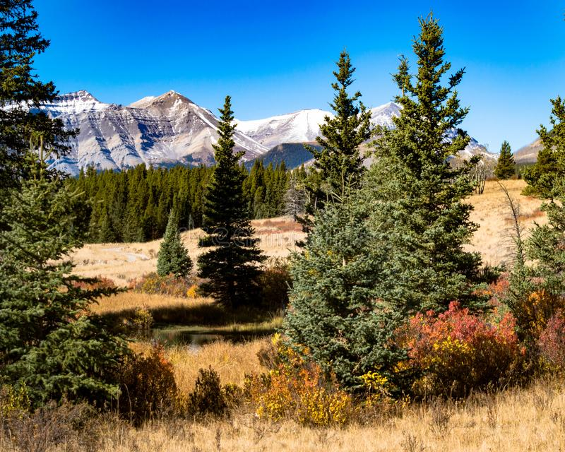 Herbst in Rocky Mountains lizenzfreies stockbild