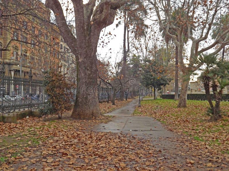 Herbst in Rom stockbild