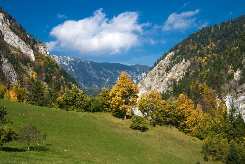 Herbst in Rumänien lizenzfreie stockfotografie