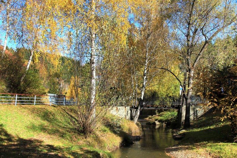 Herbst in Russland stockbilder