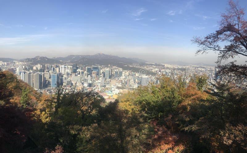 Herbst in Südkorea stockfotos