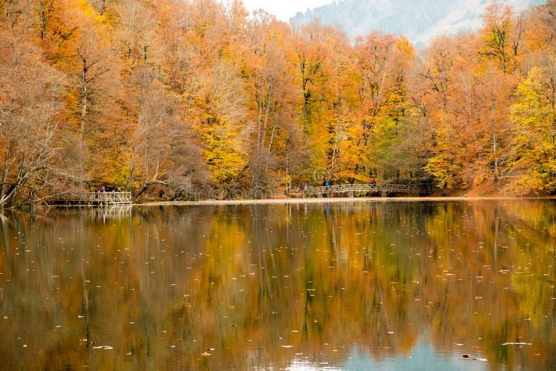 Herbst am See lizenzfreie stockfotos