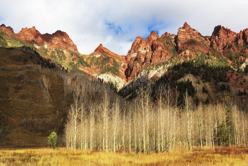 Herbst, Sievers-Berge, Aspen, Colorado stockbilder