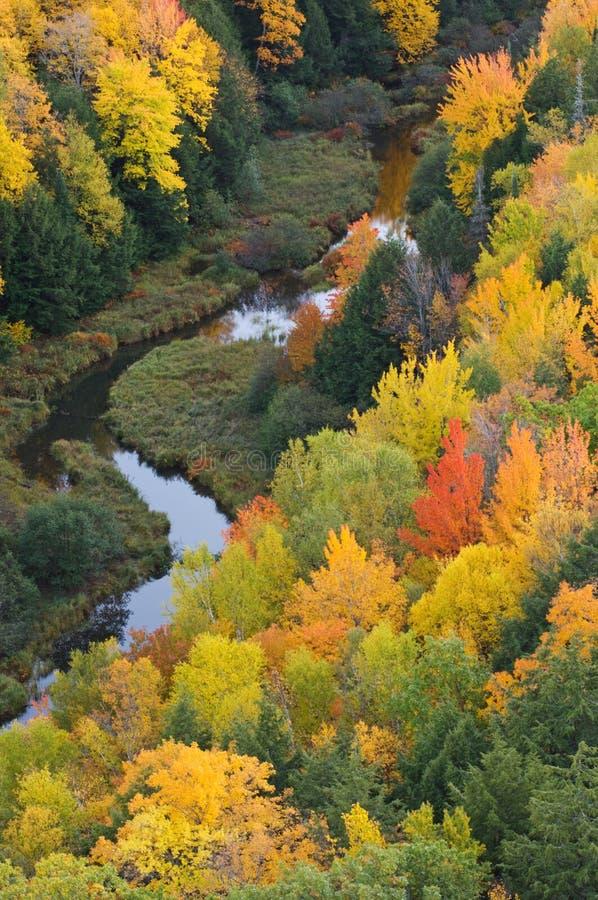 Herbst-Stachelschwein-Berge stockfoto