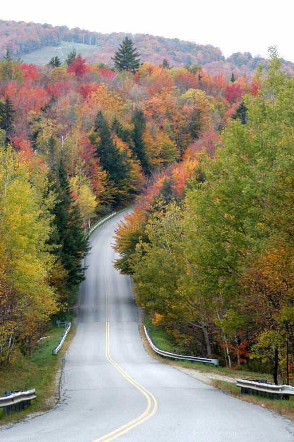 Herbst-Straße stockbild