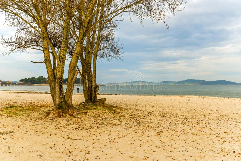 Herbst am Strand - Vigo lizenzfreies stockbild