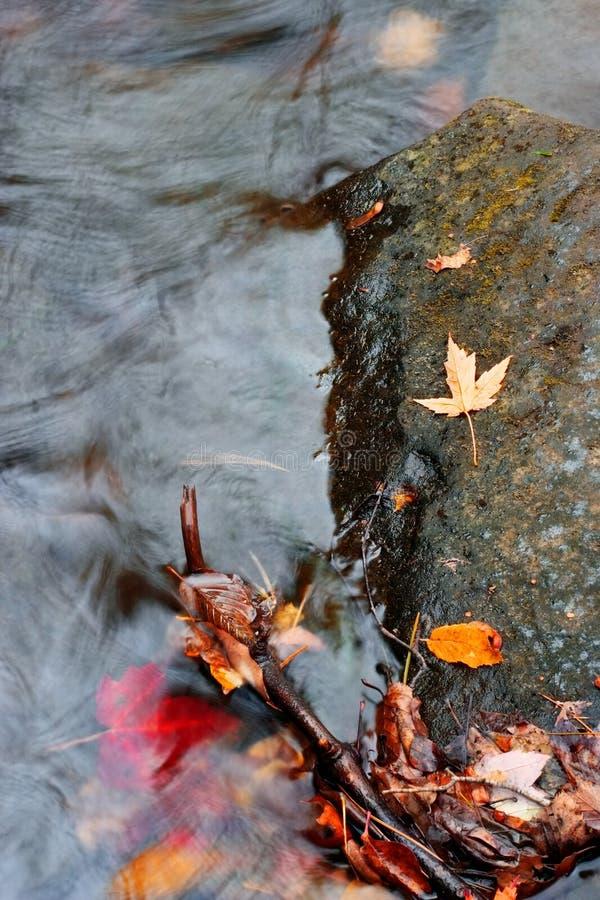Herbst-Strom lizenzfreies stockfoto