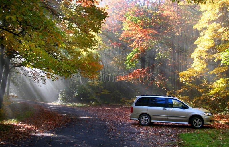 Herbst-Szene stockbilder